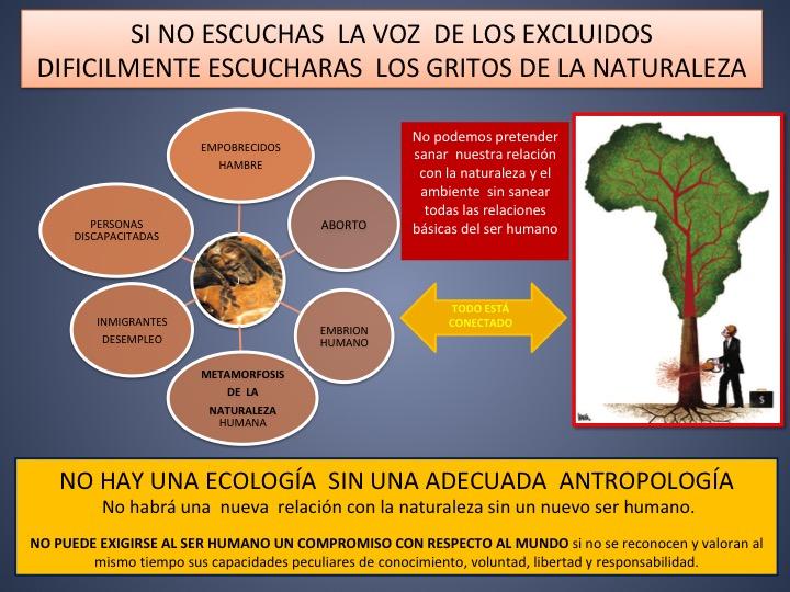 """No hay """"planteamiento ecológico real"""" sin la """"integración de una justicia social"""""""