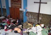 acción de los laicos en la Igleisia