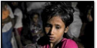 La dignidad de la persona revelada por la Ley Natural: fuente de paz social y garante de la defensa del vulnerable