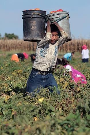 el trabajo es una prioridad humana y civil superior a cualquier otro factor de producción, incluido el capital (cf. CDSI276)